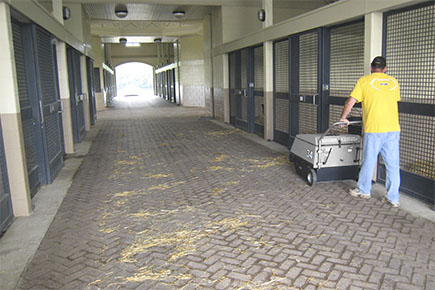34 Walk Behind Sweeper Cleaning Indoor Commercial Horse Stables